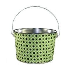 Kiwi Bucket