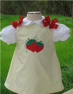 Custom Aline Strawberry Dress